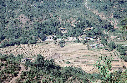 Phil 39 s india slideshow rishikesh neelkanth temple for What does terrace farming mean